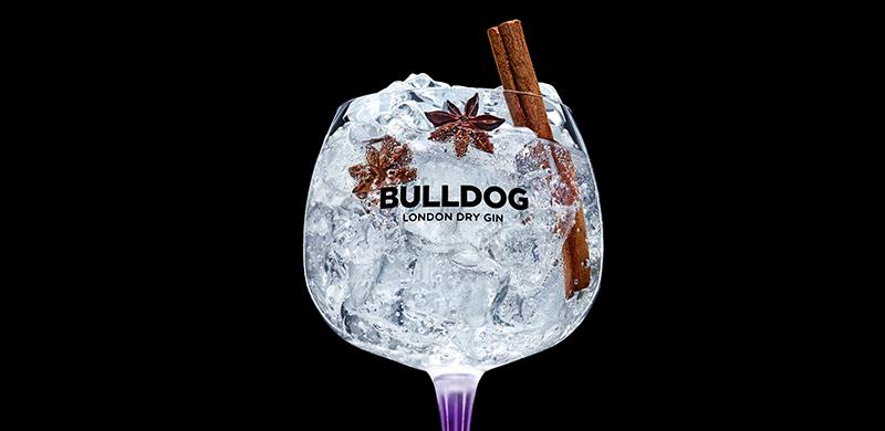 imagem_bulldog_winter
