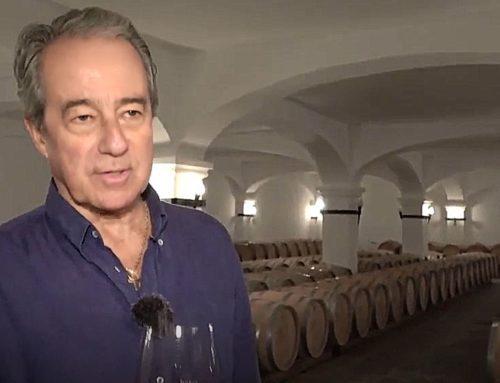 João Portugal Ramos abre as portas da sua Vila Santa, Estremoz